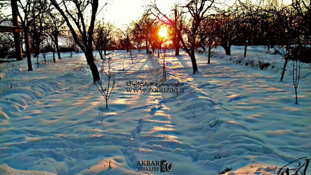 عکاس : اکبر شمسی
