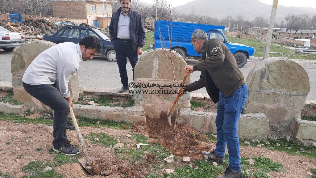 کاشت نهال در امتداد خیابان اصلی میدان روستا با مساعدت جوانان